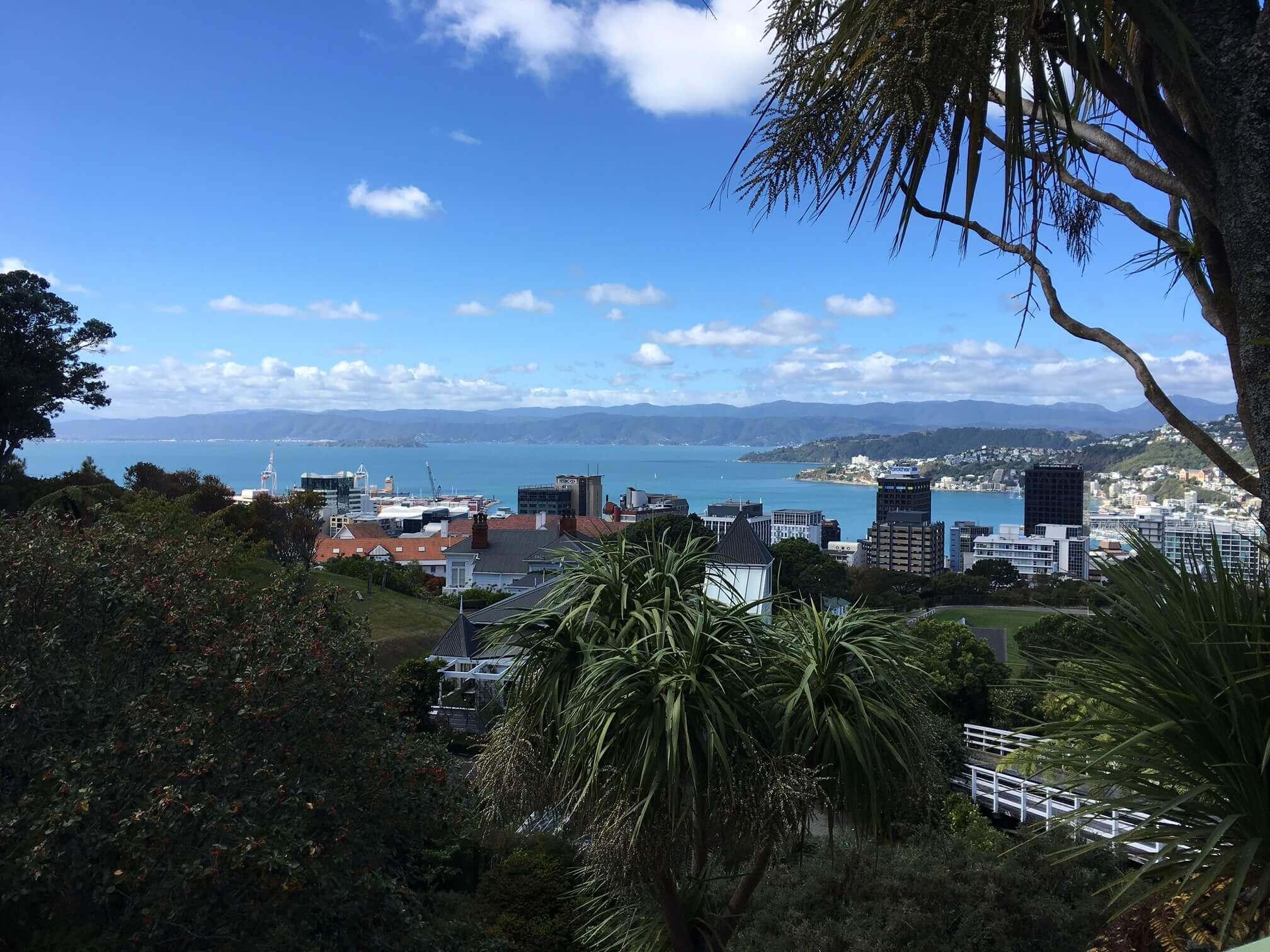 Neuseeland Wellington Ausblick